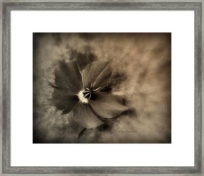 A Daughter's Love Framed Print