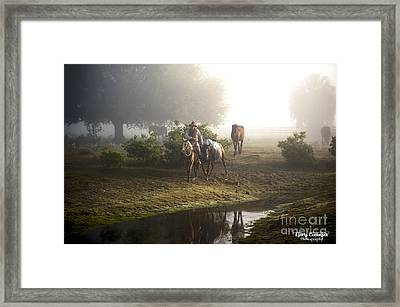 A Day At Dry Creek Framed Print