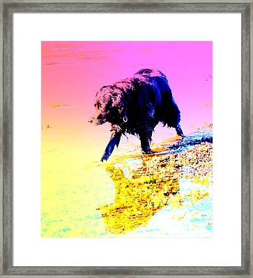 a pretty hot day at the beach and I need to be chilling my feet  Framed Print by Hilde Widerberg