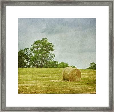 A Day At The Farm Framed Print by Kim Hojnacki