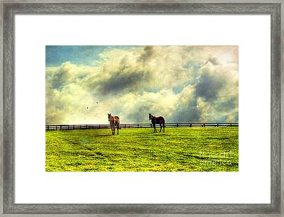 A Day In Kentucky Framed Print by Darren Fisher