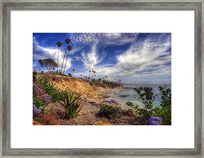 A Day In Laguna Beach Framed Print by Sean Foster