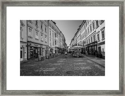 A Day In Ljubljana Framed Print