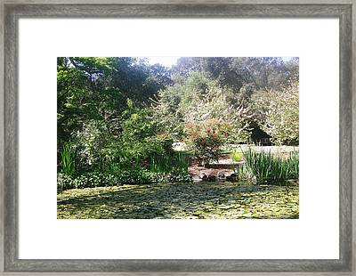 A Day In The Garden Framed Print by Marian Jenkins