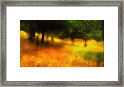 A Day Out Of Time Framed Print by Suzy Norris