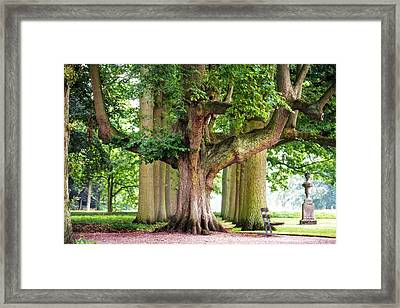 A Day Without You. Park Of The De Haar Castle Framed Print by Jenny Rainbow