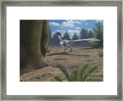 A Deinonychosaur Leaves Tracks Framed Print by Emily Willoughby
