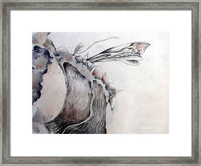 A Delicacy Framed Print