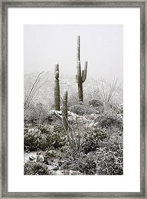 A Desert Snow Day  Framed Print by Saija  Lehtonen