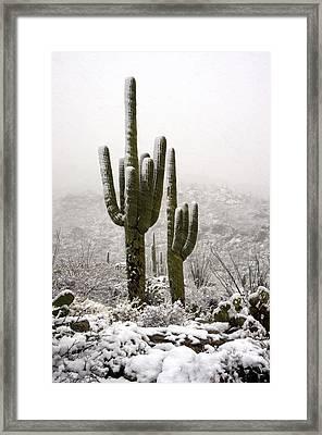 A Desert Southwest Snow Day  Framed Print by Saija  Lehtonen