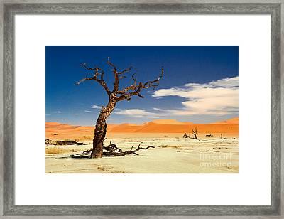 A Desert Story Framed Print by Juergen Klust