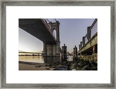 A Different Look  Framed Print