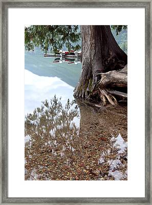 A Different Perspective Framed Print by Heather Kenward