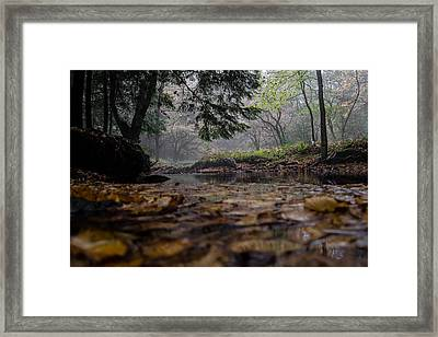 A Different Point Of View Framed Print