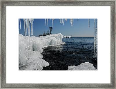 Framed Print featuring the photograph A Different Point Of View by Sandra Updyke
