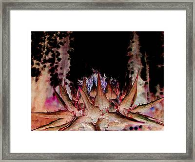 A Difficult Path  Framed Print by Shirley Sirois