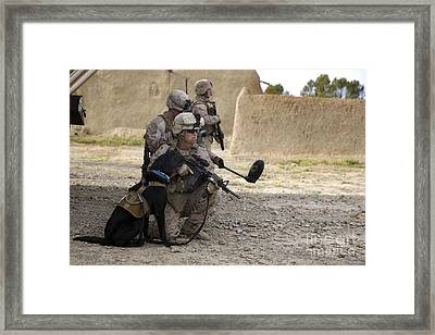 A Dog Handler Provides Security Framed Print by Stocktrek Images