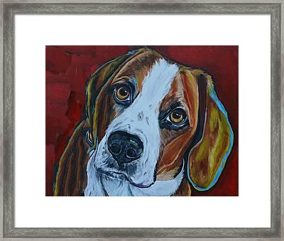 A Dogs World Framed Print by Patti Schermerhorn