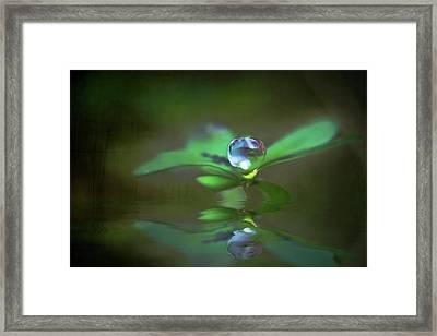 A Dream Of Green Framed Print