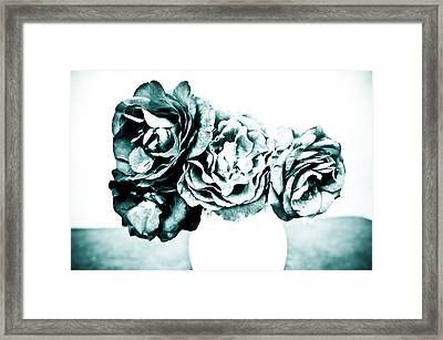 A Dream Of Roses Framed Print by Ronda Broatch