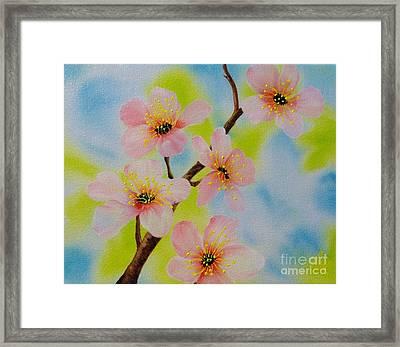 A Dream Of Spring Framed Print by Carol Avants
