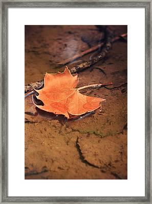 A Drift Framed Print by Lyndsey Warren