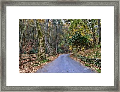 A Drive In The Country Framed Print by Paul Ward