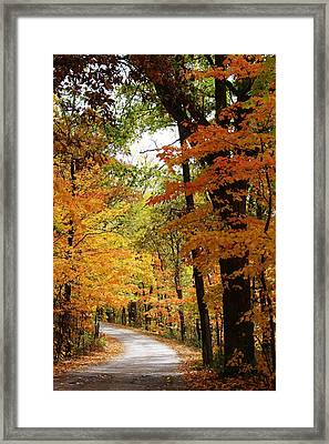 A Drive Through The Woods Framed Print by Bruce Bley
