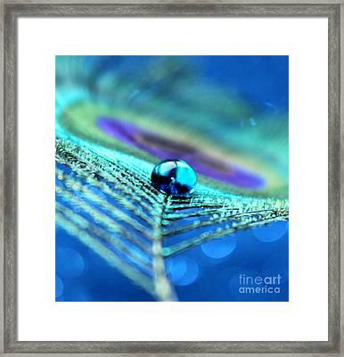 A Drop Of Mystery Framed Print by Krissy Katsimbras