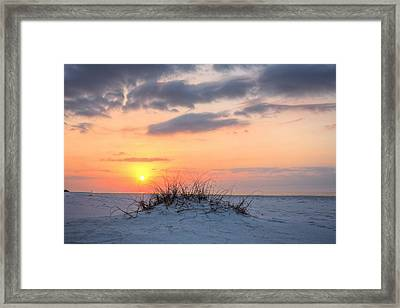 A Dune Is Born Framed Print by JC Findley