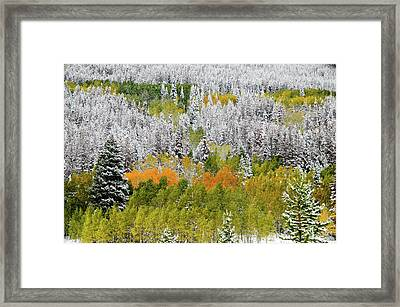 Framed Print featuring the photograph A Dusting Of Snow by Geraldine Alexander