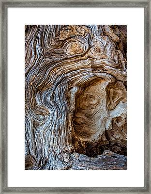 Framed Print featuring the photograph A Face In The Wood by Beverly Parks