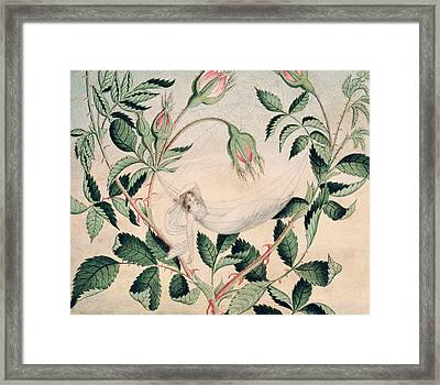 A Fairy Resting In A Hammock Spun Framed Print by Amelia Jane Murray