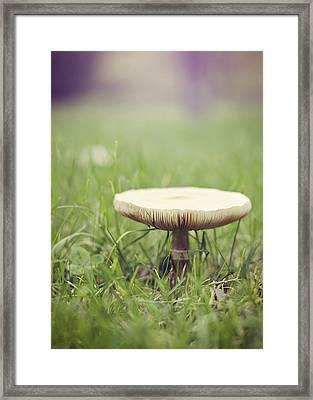 A Fairy Umbrella Framed Print by Heather Applegate