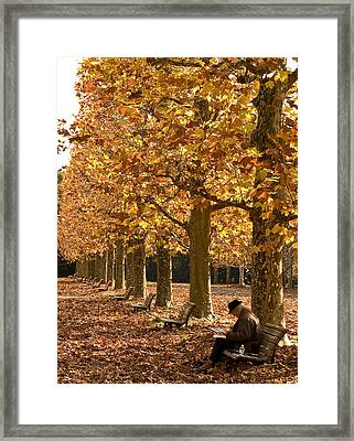 A Falling Affinity Framed Print by Aaron Bedell