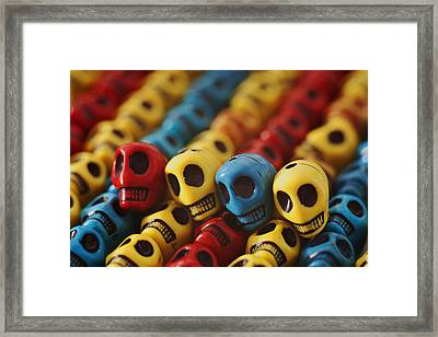 A Family Divided Framed Print by Mike Herdering