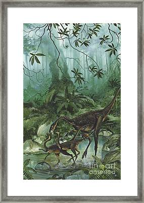A Family Of Ornithomimus Dinosaurs Framed Print by Jan Sovak