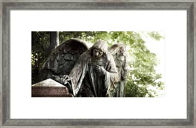 A Farewell Framed Print by Marc Huebner