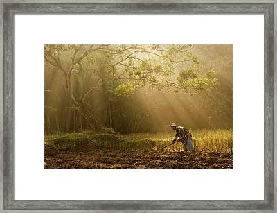 A Farmer Framed Print