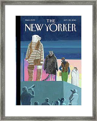 A Fashion Show With Animals Walking Framed Print
