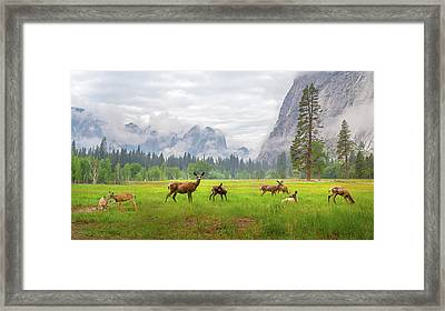 A Feeling Of Ancient Time Framed Print