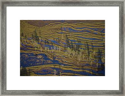 A Fen Or Mire In The Northern Section Framed Print