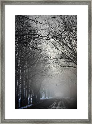 A Few Of My Favorite Things Trees In Fog Framed Print