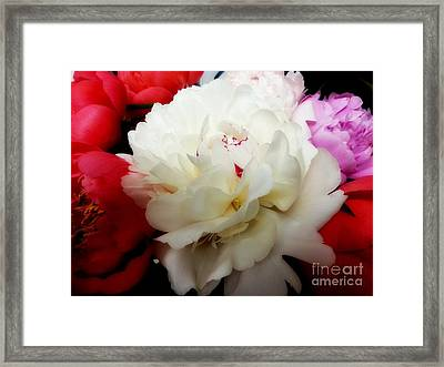 A Few Peonies Framed Print by Heather L Wright
