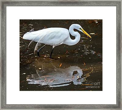 A Fine Catch Framed Print