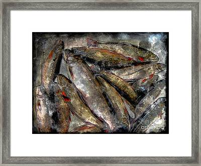 A Fine Catch Of Trout - Steel Engraving Framed Print by Barbara Griffin