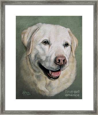 A Fine Old Lady Yellow Labrador Portrait Framed Print