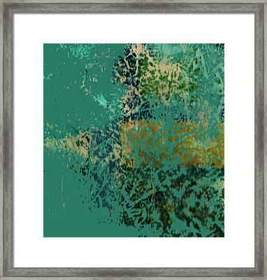 A Fish In A Dream Framed Print by Anne-Elizabeth Whiteway