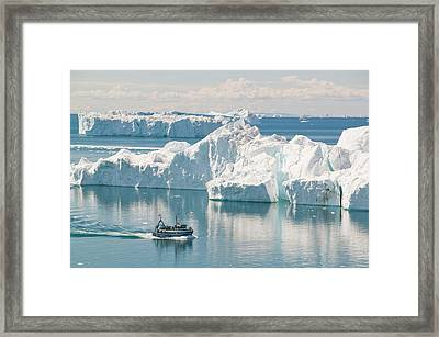 A Fishing Boat Sails Through Icebergs Framed Print by Ashley Cooper