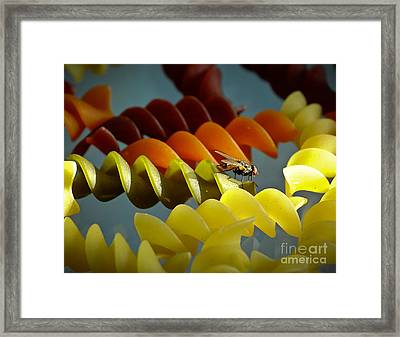 A Fly In My Pasta Framed Print